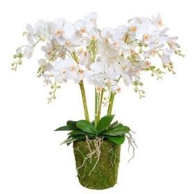 Grand Lady White Faux Orchid